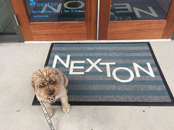 Dog in front of the Nexton Greeting House.