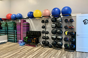 Exercise Equipment at Bold Fitnesss, Nexton Square