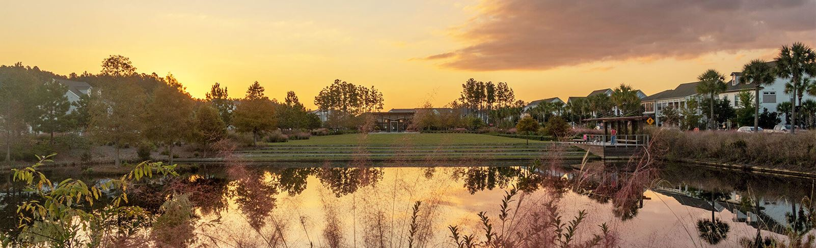 Pond and green space at sunset.